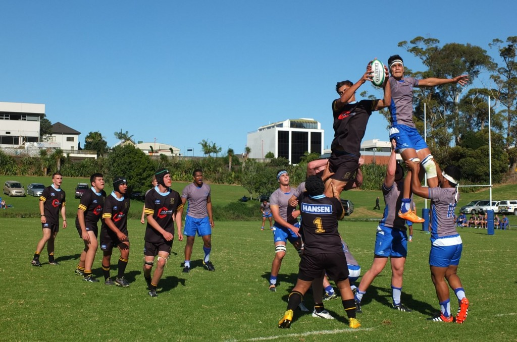 Whangarei Boys High School 1st XV