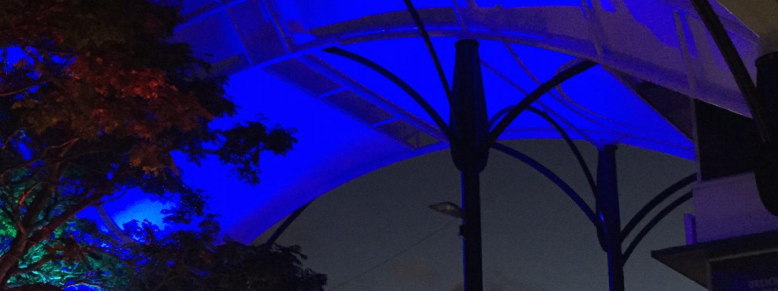 Cameron Street Mall Canopy